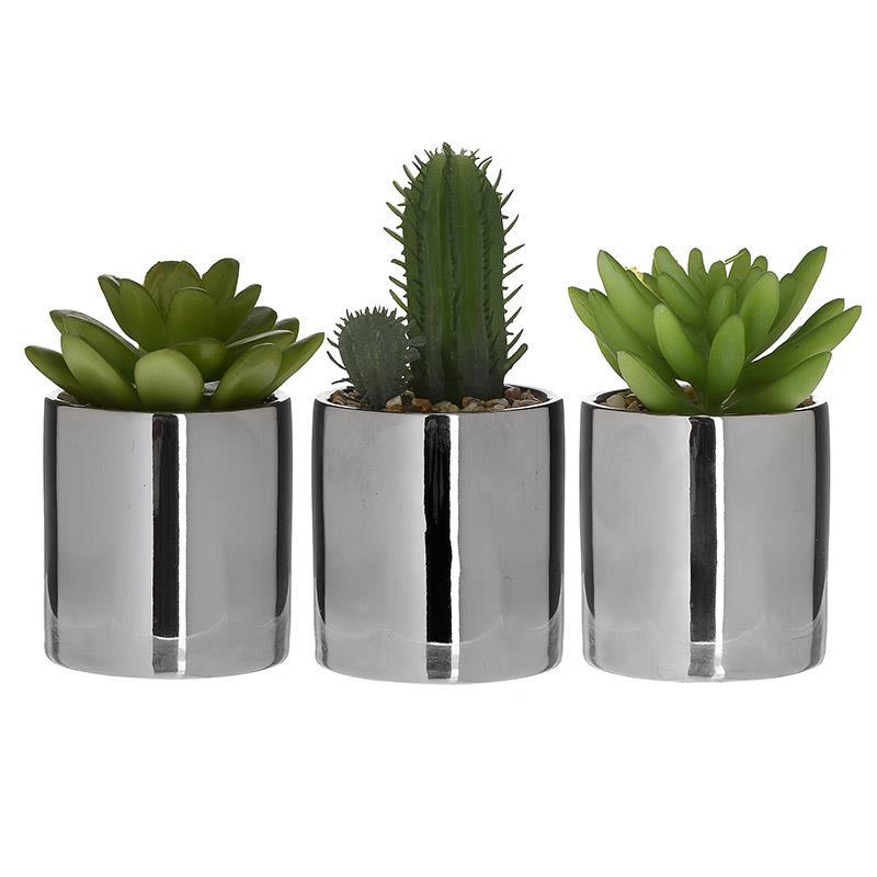 Φυτό σε γλάστρα σε 3 σχέδια 6×12/13/14cm Inart 3-85-475-0219