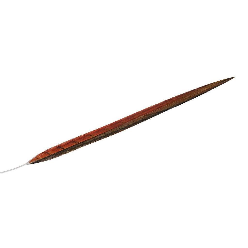 Φτερό πορτοκαλί 90cm Espiel FTE113K6