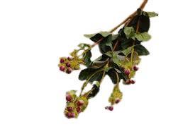 Διακοσμητικό λουλούδι berry φύλλα υπέρικο πράσινο 70cm